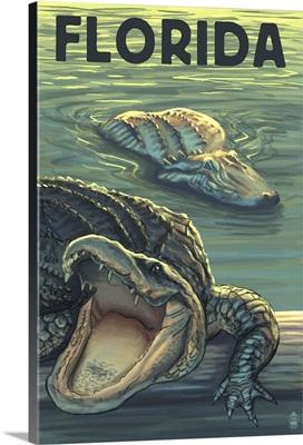 Florida, Alligators