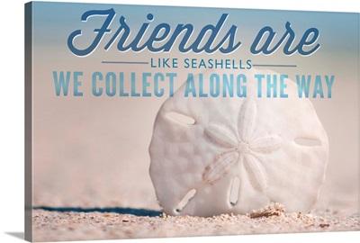 Friends are Like Seashells, Sand Dollar