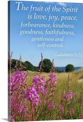 Galatians 5:22 - Inspirational