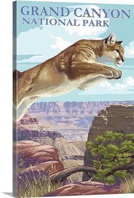 Grand Canyon National Park, Cougar Jumping
