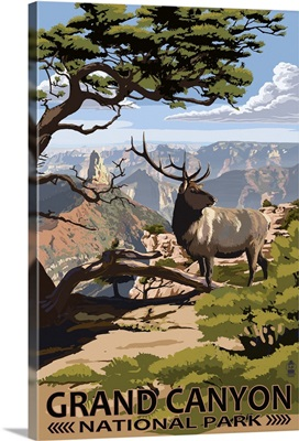 Grand Canyon National Park, Elk and Point Imperial