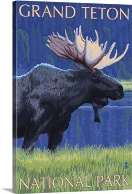 Grand Teton National Park - Moose at Night: Retro Travel Poster