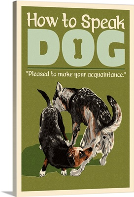 How to Speak Dog, Greeting