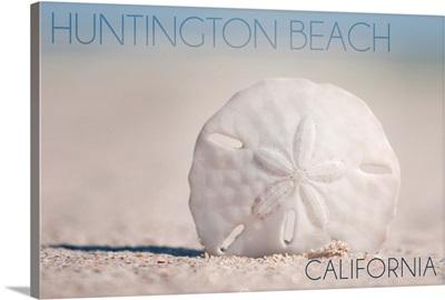 Huntington Beach, California, Sand Dollar and Beach