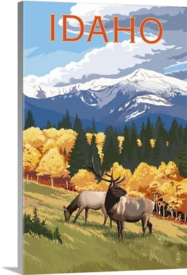 Idaho, Elk and Mountains