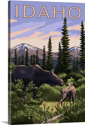 Idaho, Moose and Baby Calf