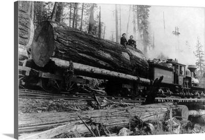 Logging Train carrying men and 12 foot diameter Fir Trees, Cascades, WA