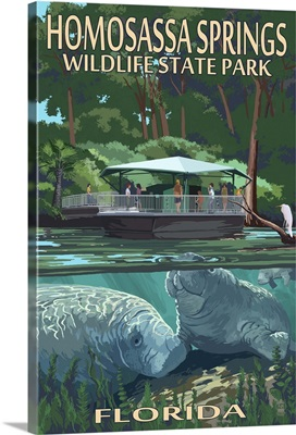 Manatees and Boat, Homosassa Springs Wildlife Park, Florida