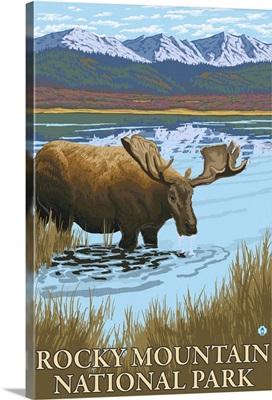 Moose Drinking - Rocky Mountain National Park: Retro Travel Poster