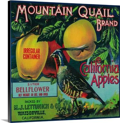 Mountain Quail Apple Crate Label, Watsonville, CA