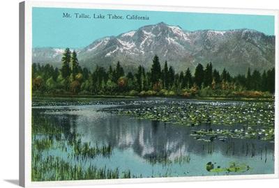 Mt. Tallac and Lake Tahoe, California