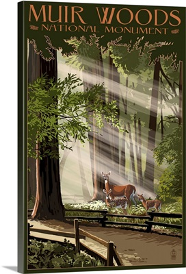 Muir Woods National Monument, California - Deer and Fawns: Retro Travel Poster