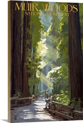 Muir Woods National Monument, California - Pathway: Retro Travel Poster