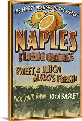 Naples, Florida - Orange Grove Vintage Sign: Retro Travel Poster