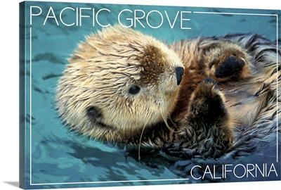 Pacific Grove, California, Sea Otter