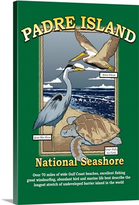 Padre Island National Seashore, Texas