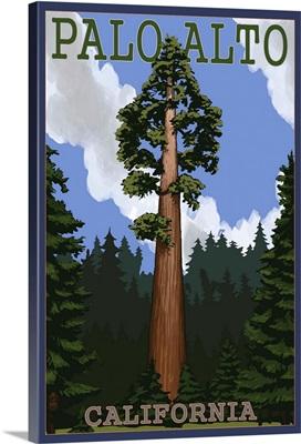 Palo Alto, California - California Redwoods: Retro Travel Poster