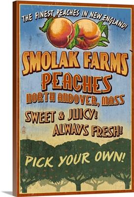 Peaches, Smolak Farms, Massachusetts