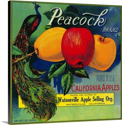 Peacock Apple Crate Label, Watsonville, CA