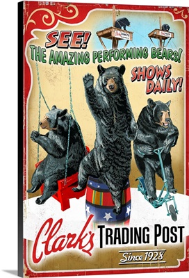 Performing Bears, Clark's Trading Post, Lincoln, New Hampshire