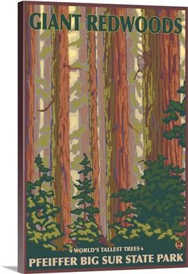 Pfeiffer Big Sur State Park, California - Giant Redwoods: Retro Travel Poster