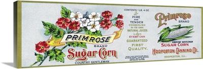 Primrose Sugar Corn Label, Hoopeston, IL