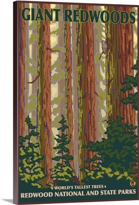 Redwood National Park, CA: Retro Travel Poster