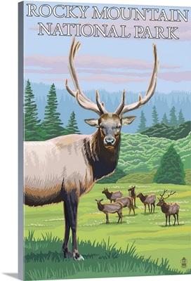 Rocky Mountain National Park, CO - Elk Herd: Retro Travel Poster