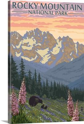 Rocky Mountain National Park, Colorado - Bear Family: Retro Travel Poster