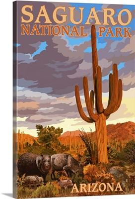 Saguaro National Park, Javelina