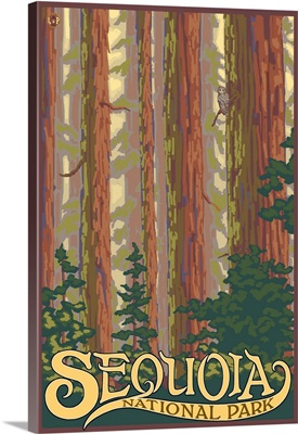Sequoia National Park - Forest View: Retro Travel Poster