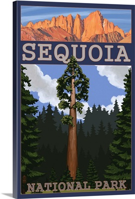 Sequoia National Park - Sequoia Tree and Palisades: Retro Travel Poster