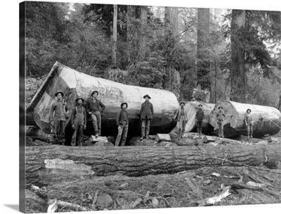 Steam Logging in the Cascades of Washington State