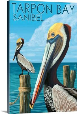 Tarpon Bay, Florida, Brown Pelicans, Lantern Press Original Poster