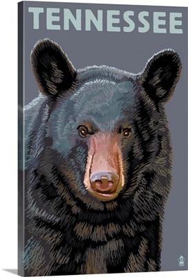 Tennessee, Black Bear Up Close