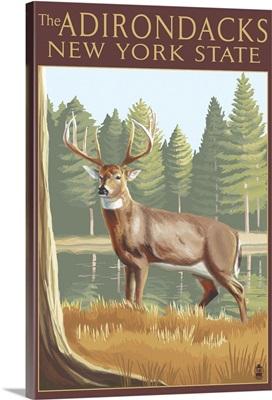 The Adirondacks, New York State - White Tailed Deer Buck: Retro Travel Poster