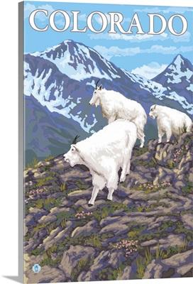 White Mountain Goat Family - Colorado: Retro Travel Poster