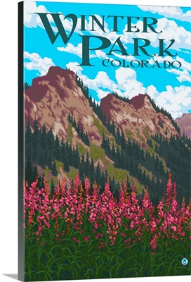 Winter Park, Colorado, Fireweed and Mountains