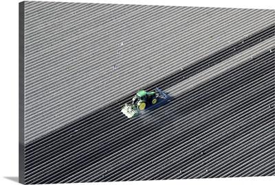 Farmer Plowing Potato Field, Lelystad - Aerial Photograph