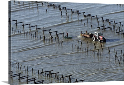 Farming Mussel Beds, Pont-Mahe, France - Aerial Photograph