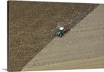 Landbouw, Dronten, Holland - Aerial Photograph