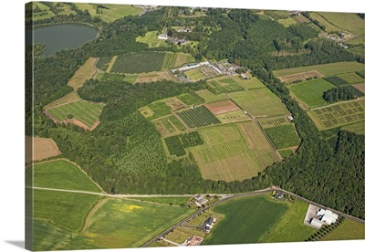 Loughgall Orchards, Armagh, Northern Ireland, UK - Aerial Photograph