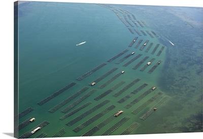 Mussel Farming, Ebro Delta, Spain - Aerial Photograph