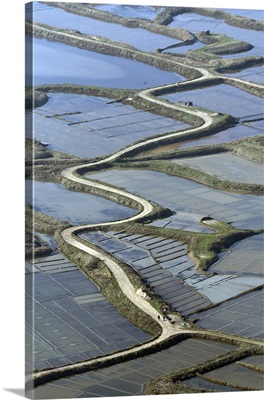Road In Saltmarshes, Guerande, Guerande, France - Aerial Photograph