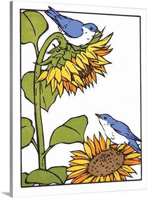 Sunflower Bluebirds