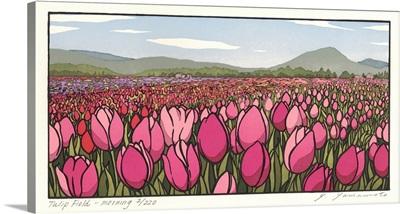 Tulip Field - Morning