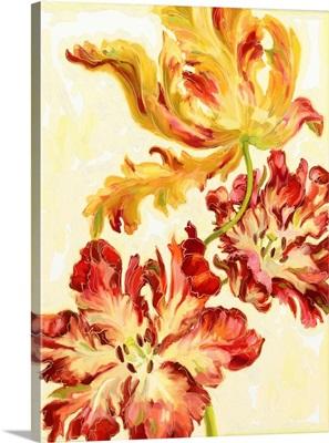 Etude de Tulipes II