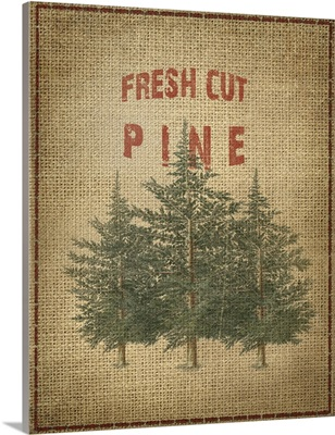 Fresh Cut Pine