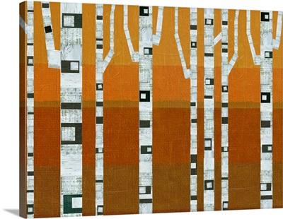 Rustic Fall Birches