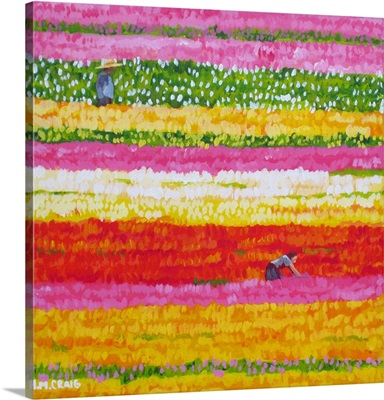 Tulip Fields I: How I Wish You Were Here With Me